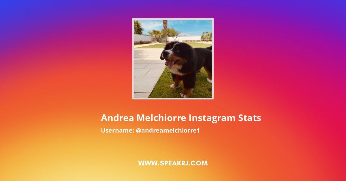 Andrea Melchiorre Instagram Stats