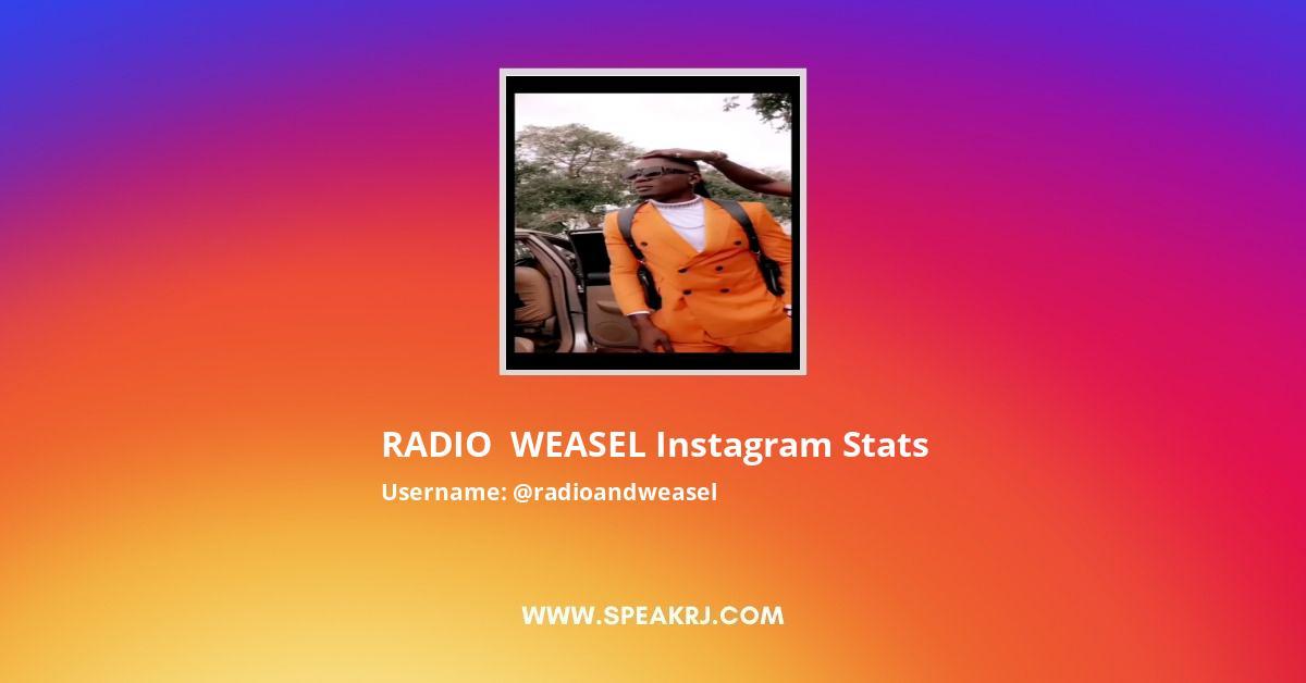 Radioandweasel Instagram Stats