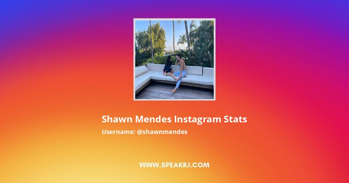 Shawn Mendes Instagram Stats