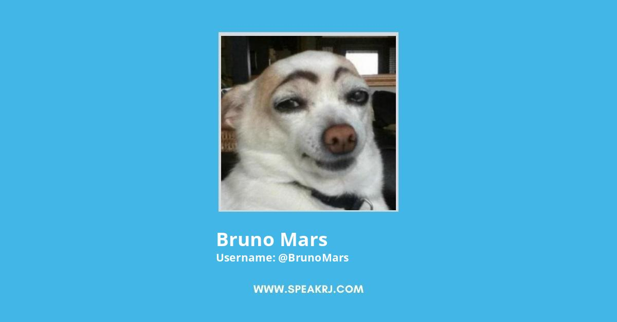 Bruno Mars Twitter Followers Growth